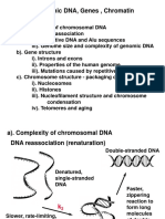 genomic DNA  2.ppt