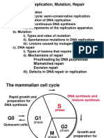 Dna  mutation  3.ppt