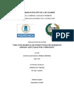 TESIS_MASTER_LETICIA_RAFAELINA_PEREZ_MENDEZ.pdf