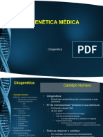 gmed_citogenetica.pptx