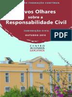 Novos Olhares Sobre a Responsabilidade Civil