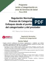1. Regulación, Proceso de Categorización. Enfoques