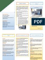 TRIPTICO CANTA.pdf