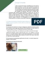 Manual de Hongos 1(1)