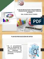 10 Plan de Procesamiento y Análisis de Datos