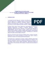 INFORME FINAL DE CALIFICACION ESTUDIO DE IMPACTO AMBIENTAL PROYECTO PUCOBRE