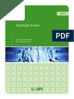 Fisio Rep.pdf