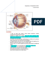 Clase 14 Patologias de Ojo