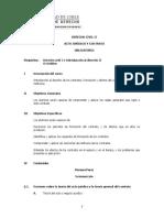 Programa Derecho Civil II Acto Juridico y Contrato Aprobado El 11-11-2009 (2)