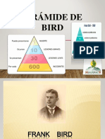 PIRAMIDE DE BIRD 1.ppt