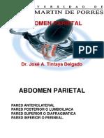 Pared Abdominal Jatd (2)