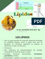 TERPENOS Y ESTEROIDES.pdf