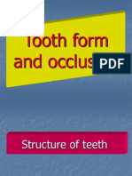 Tooth Form and Occlusion45