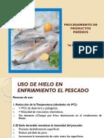 Usos Del Hielo en La Pesqueria Act