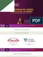 curso01_hierro_gineco_clase01_ESP.pdf