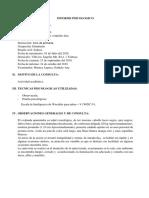 WISC v Informe Ficticio