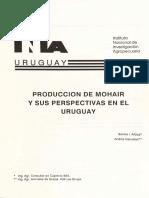 Cabra Angora Uriguai