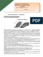 5° basico11-lenguaje.pdf