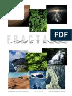 Trabajo Fractales (Amir 2006).pdf