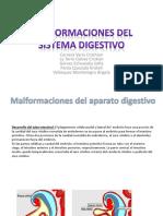 260287897-Malformaciones-del-sistema-digestivo.pptx