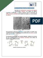 enzimas-en-la-industria-textil-biopulido.pdf