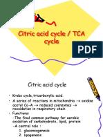 2.Citric Acid Cycle k 21