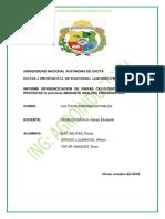 informe de cultivos de telas IV.docx