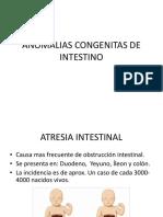 Anomalias Congenitas de Intestino