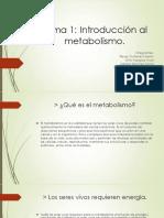 Tema 1 Introducción Al Metabolismo