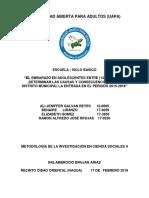Metodologia Trabajo Final Causas y Consecuencia Del Embarazo en Adolescentes (1)