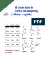 T16-nucleotidos.pdf