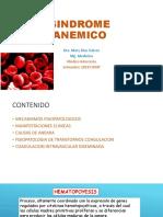 13. Síndrome Anémico 12 09 2018