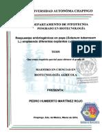 TESISMCBA2014031411131249.pdf