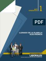 2010 Llenado de Planillas Electrónicas
