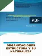 3organizacionesnaturalezaysuestructuras-140504134634-phpapp02