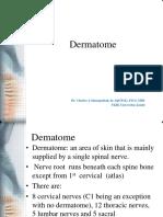 Dermatome Tubuh 2017