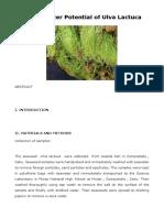 Ulva Lactuca as Biofertilizer