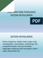 Anatomi Dan Fisiologis Sistem Integumen_ida Baru