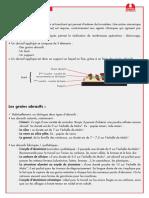 2302_Abrasifs_appliques.pdf