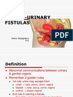 21genito Urinaryfistula 120815103344 Phpapp01