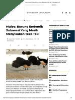Maleo, Burung Endemik Sulawesi Yang Masih Menyisakan Teka Teki – Mongabay.co.id