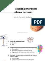 Tema 6. Organización general del sistema nervioso.pdf