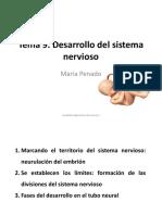 Tema 9. Desarrollo del sistema nervioso.pdf