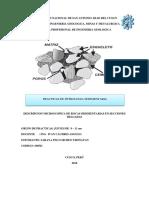 Informe Sedimentaria