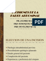 Incisiones Pared Abdominal
