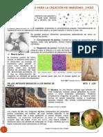 TEMA 2 PLASTICA 1º ESO.pdf