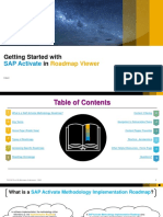 Getting+started+with+roadmap+viewer.pdf