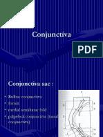 3-konjungtiva.PPT