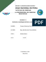 Anatomia y Morfologia Del Fruto y Semilla