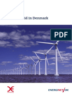 ENERGYNET 2010-Smart Grid in Denmark.pdf